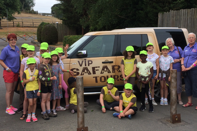 Brownies Go Wild At West Midlands Safari Park