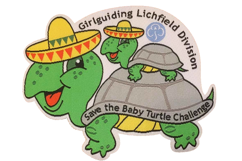 Save The Baby Turtle Challenge Badge