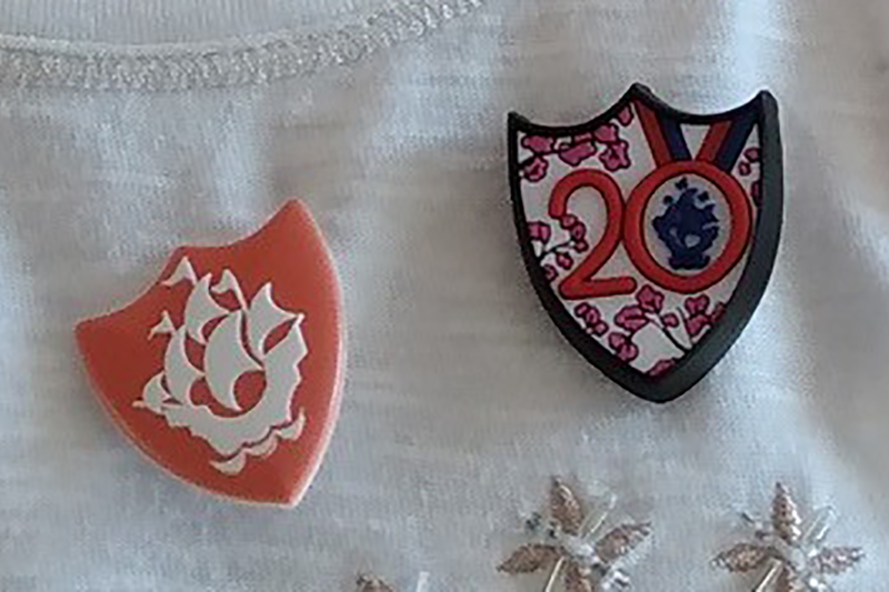 Lichfield Guide Wins Blue Peter Badge Competition