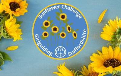County Sunflower Challenge